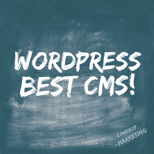 WordPress Is A Top Choice for Custom Management Systems